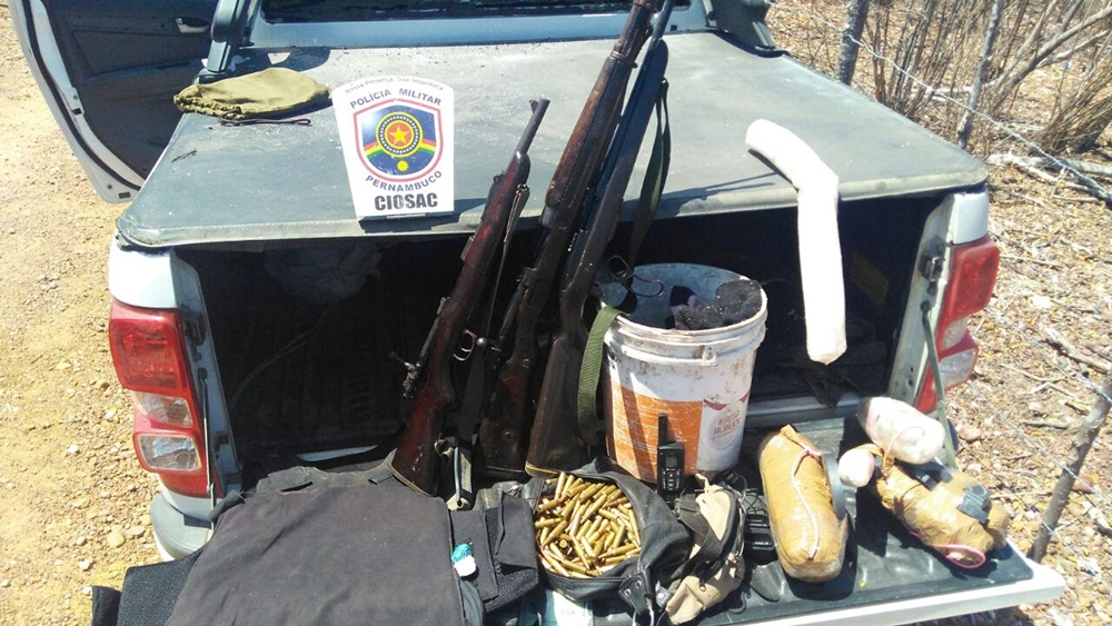 Polícia Erradica 69 Mil Pés De Maconha Durante Operação No