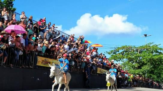Prefeitura de Panelas cancela Festival Nacional de Jericos 2020