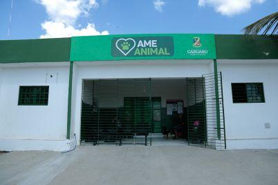 AME-Animal-SEIC-Divulgacao.jpg