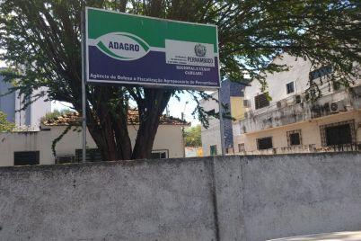 Adagro-foto-1-Edvaldo-Magalhães.jpg