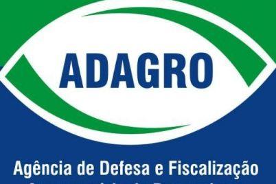 Blog-do-Anchieta-Gueiros-6.jpg
