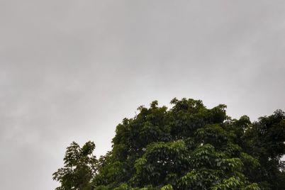 Chuva-dia-1º-de-setempro.jpg