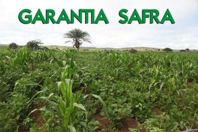 GARANTIA-SAFRA.jpg