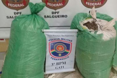 POLÍCIA-FEDERAL.jpg