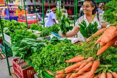 Verduras-foto-Janaina-Pepeu.jpg