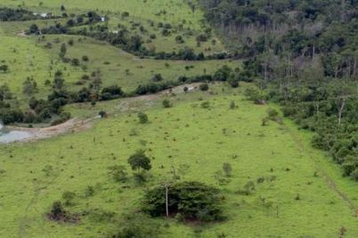 projeto_rural_na_amazonia_-_pnud.jpg